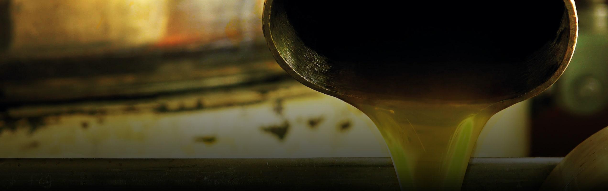 Frantoio Porto Di Mola | Molitura Olive