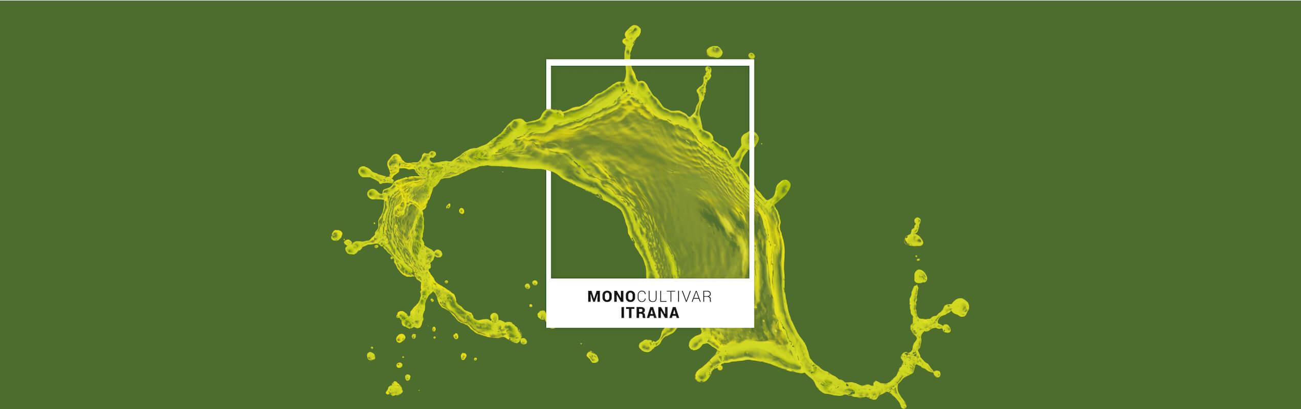 Banner Frantoio Porto Di Mola | Monocultivar Itrana